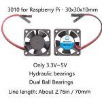 3010 Raspberry Pi